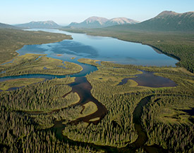 landscapes in the Bristol Bay watershed