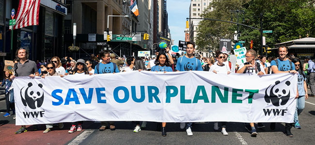 WWF at Climate March 2019 in New York