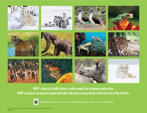 2016 Wwf Calendar World Wildlife Fund