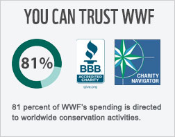 81 cents of every donated dollar goes toward conservation.