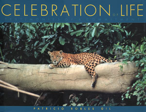 Celebration of Life Book