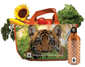 Tiger Tote and Water Bottle