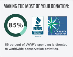 85 cents of every donated dollar goes toward conservation.