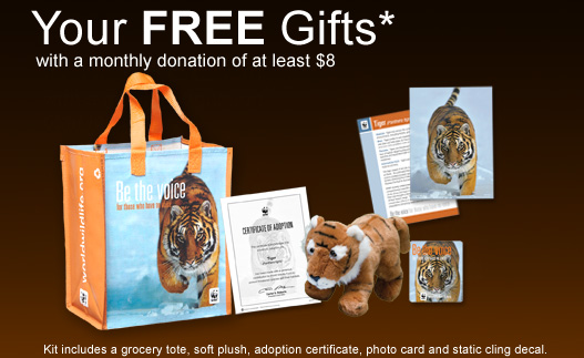 Your FREE Gifts* with a monthly donation of at least $8.