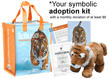 Tiger adoption kit