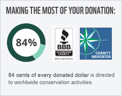 84 cents of every donated dollar goes toward conservation.