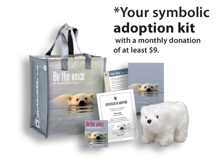Polar Bear Adoption Kit.png
