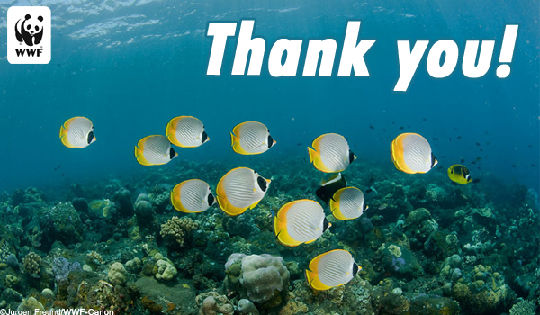 Thanks Ecard Underwater