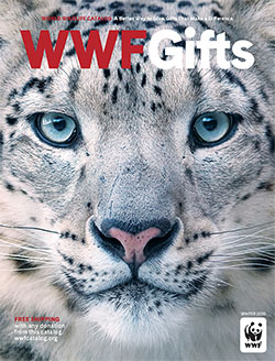Holiday Gift Catalog cover with snow leopard