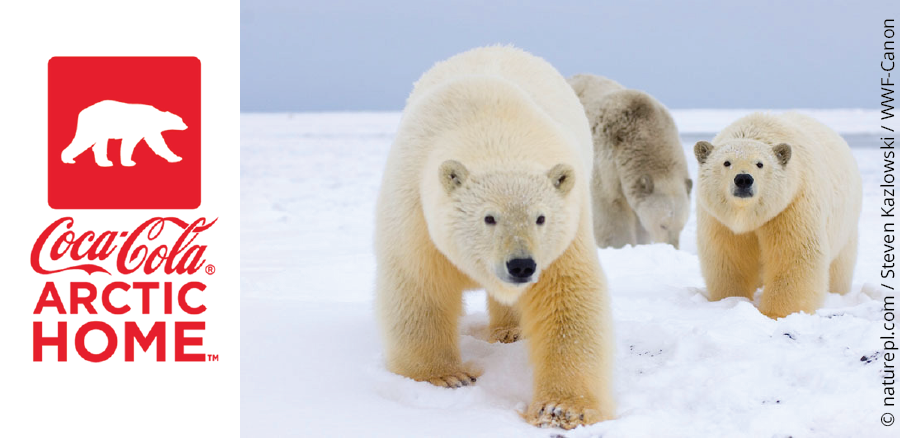 Help Save the Polar Bear's Arctic Home