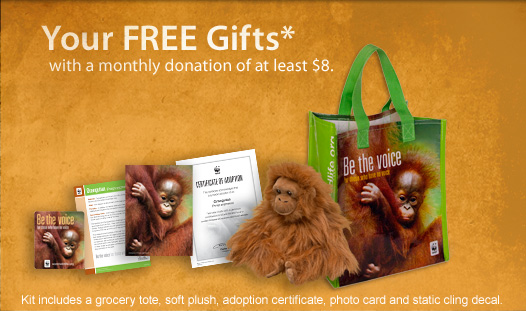 Your FREE gifts with a monthly donation of at least $8