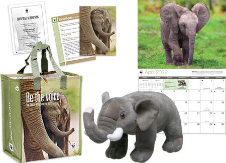 elephant adoption kit