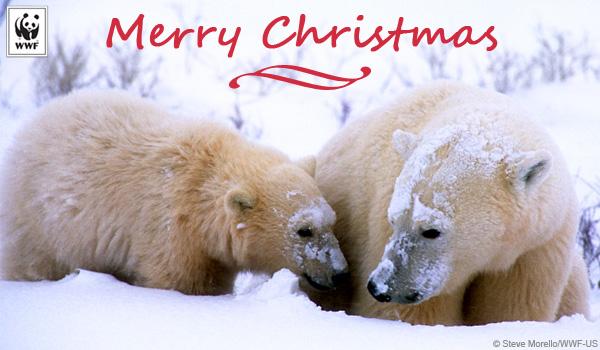 Youtube Christmas Cards To Make