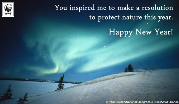 Celebrate the holidays with a gift to nature world for Wildlife christmas cards 2016