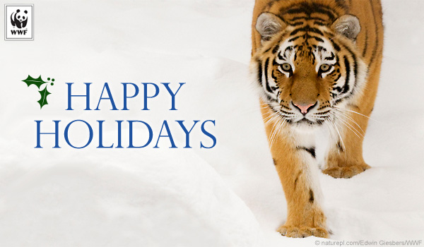 send free ecards to your friends and family world wildlife fund
