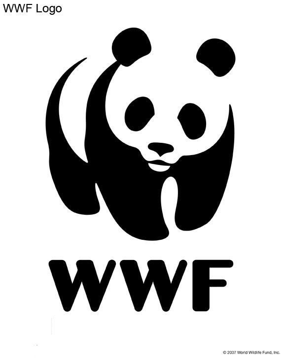pumpkin carving patterns from wwf free stencil downloads world rh support worldwildlife org