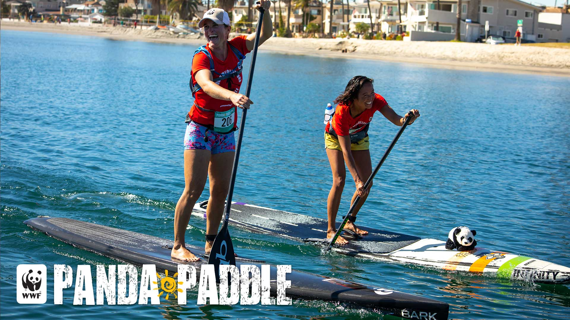 Panda Paddle: Take a Stand for Nature