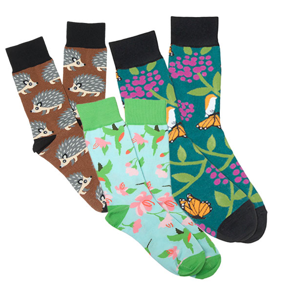 socks with hummingbirds, hedgehogs and monarchs