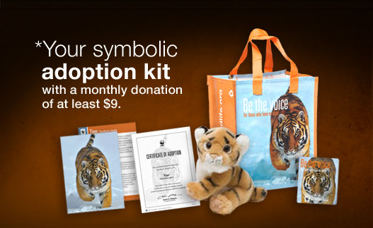 *Your symbolic adoption kit with a monthly donation of at least $9.