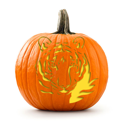 Pumpkin carving patterns from wwf free stencil downloads