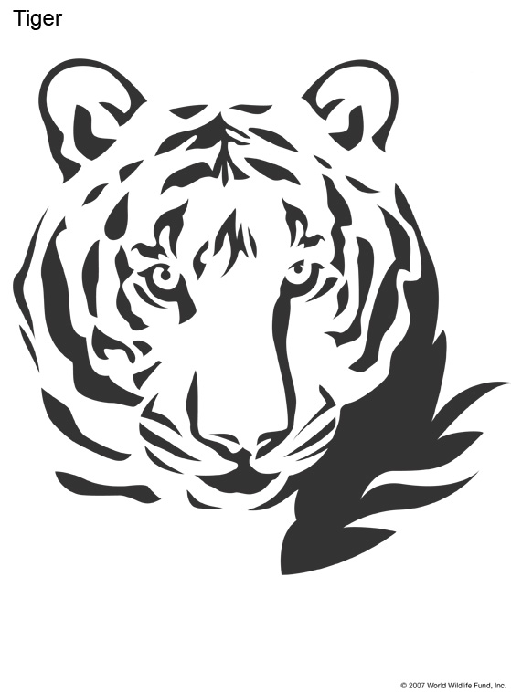related keywords suggestions for tiger stencil