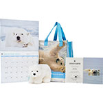 A Polar Bear Adoption Kit