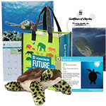 Sea Turtle Adoption Kit