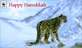 Holiday Donation Ecard Snow Leopard