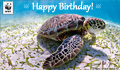 Birthday Donation Ecard Ocean